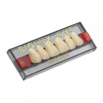 Dente Biolux OMC Vipi - Modelos Anteriores