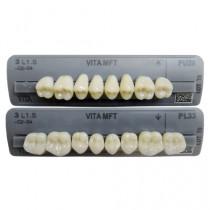 Dente VITA MFT - modelos posteriores