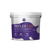 Silicone para Muralha Yller Reflex LAB 2,6Kg