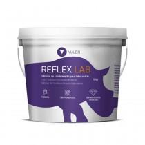 Silicone para Muralha Yller Reflex LAB 5Kg