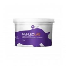 Silicone para Muralha Yller Reflex LAB 900g