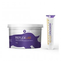 Silicone para Muralha Yller Reflex LAB KIT - Reflex LAB 900g + Reflex Catalisador Universal 50g